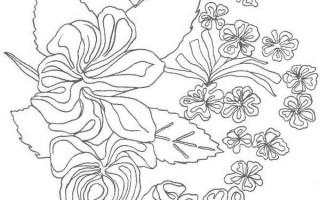 Схемы вышивки лентами