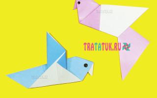 Как сделать голубя в технике оригами